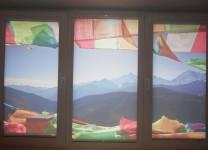 Рулонные шторы с рисунком - фото